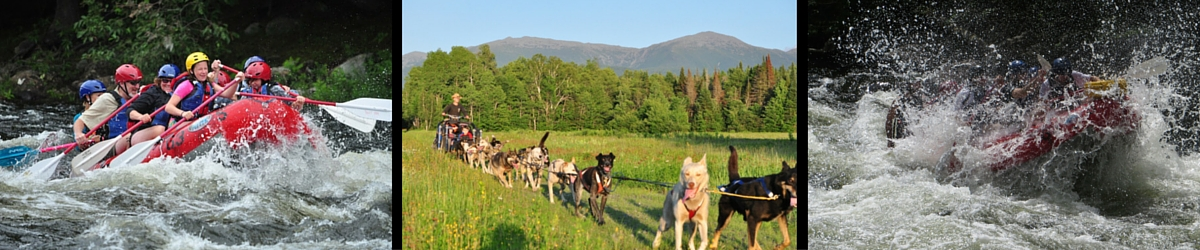Welcome - Rafting & Rolling Dog Sledding